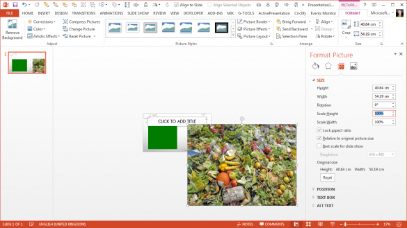 PowerPoint Magnifier Tool - Picture at 100 percent
