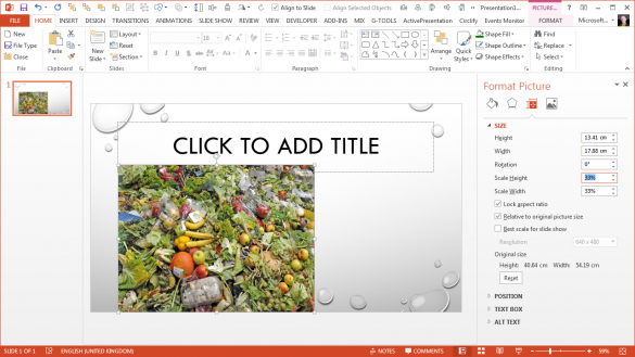 PowerPoint Magnifier Tool - Picture at 33 percent