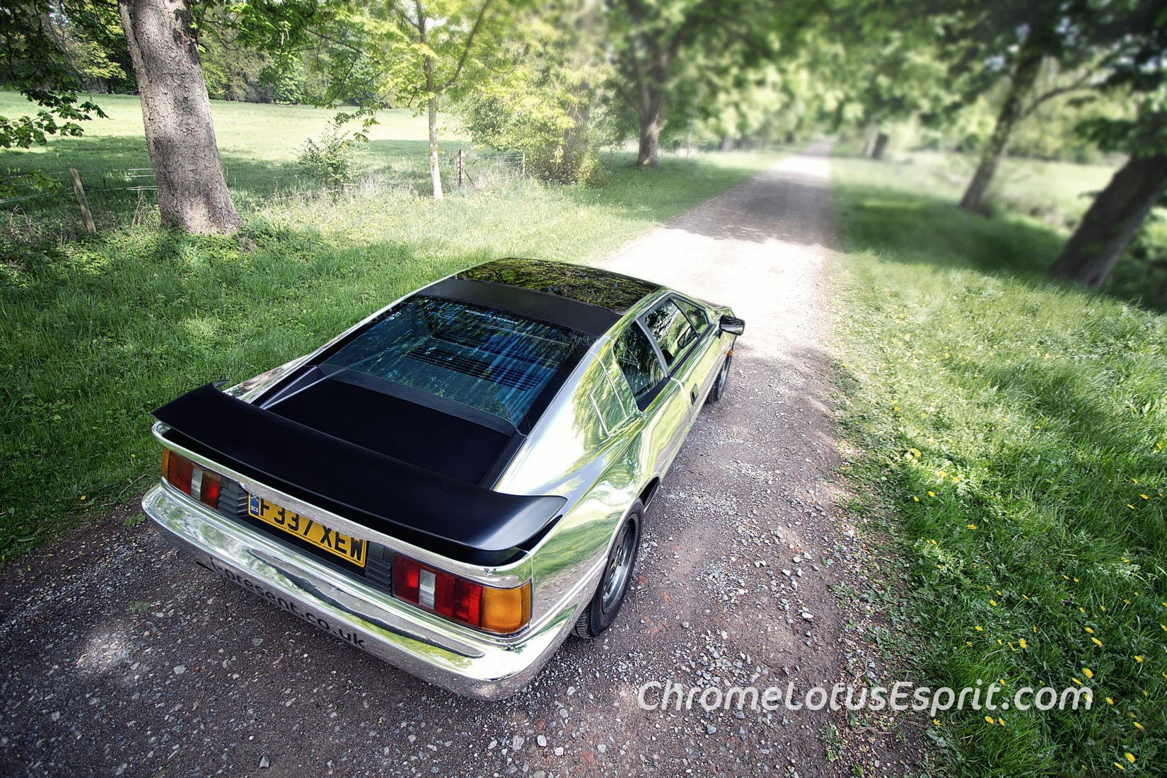 Chrome-Lotus-Esprit-for-sale-04